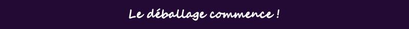Fanatec Clubsport Wheel: les tests Nextgen D%e9ballage%20commence