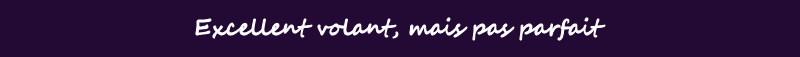 Fanatec Clubsport Wheel: les tests Nextgen Excellent%20mais%20pas%20parfait